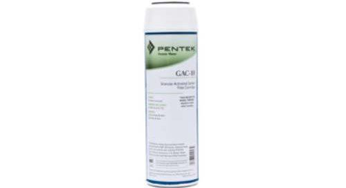 Pentek GAC 10